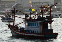 Таиланд обвиняется в неспособности искоренить убийство и рабство в рыбной промышленности