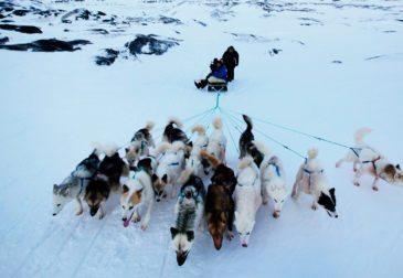 Россия реализует в Арктике 150 проектов