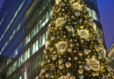 Самую красивую ёлку Москвы установят 1 декабря на Белой Площади