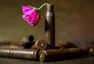 Вооруженные силы США сделают снаряды биоразлагаемыми