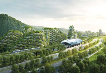 Зеленый город — будущее нашей планеты