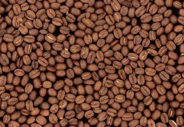 Употребление кофе увеличивает продолжительность жизни