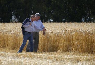 Рекордный урожай зерна в России угрожает американским фермерам