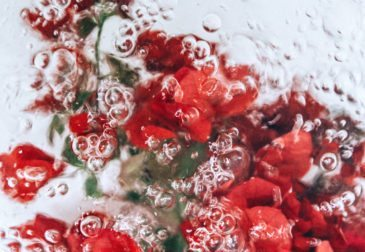 Плавающие цветы Лизы Соргини