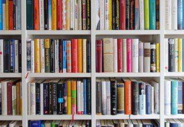 Почему чтение книг должно быть вашим приоритетом