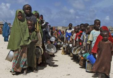Международные организации спасут планету от голода