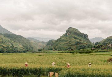 Захватывающее путешествие по Северному Вьетнаму