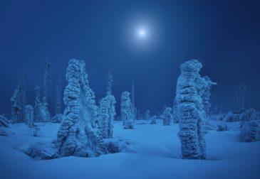 «Зима близко». Серия фотографий, воплощающая в жизнь «Игру престолов»
