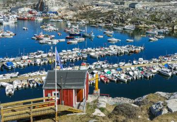 Сотрудники Трампа заняты разработкой покупки Гренландии