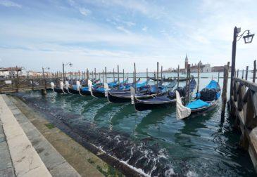 Как преобразилась Венеция пока её жители на карантине