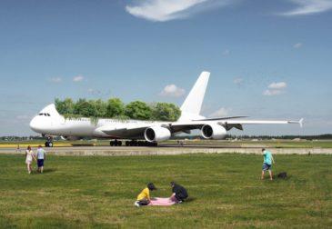Леса в самолетах? Креативный подход к изменению мира