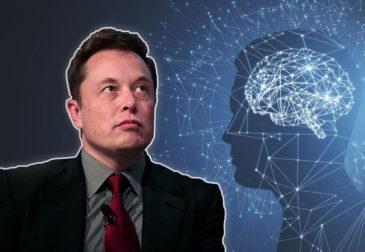 Чипы в мозг: как устроен Neuralink Илона Маска
