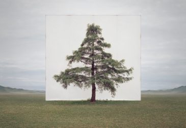 Природа в обрамлении корейского художника