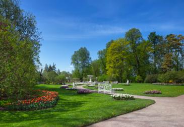 Модернизация парков – панацея для городов, которым не всё равно на качество жизни людей